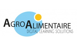 Formation Digital Learning Solutions